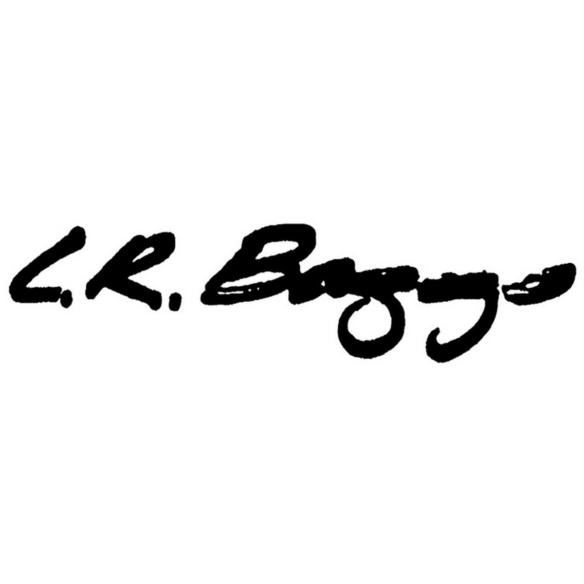 Lr baggs logo