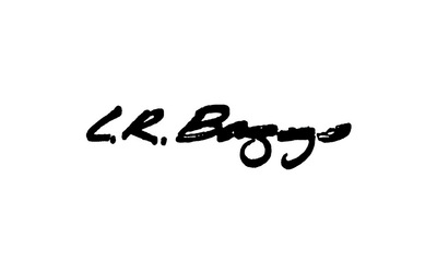 Display lr baggs logo