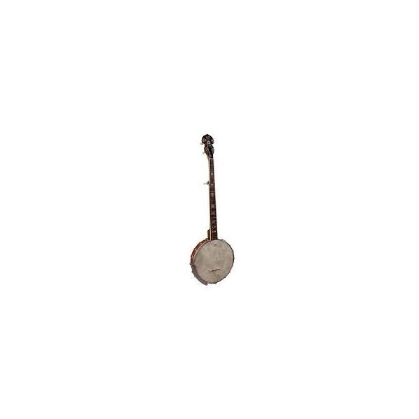 Square barnes mullins banjo g bj350g.2